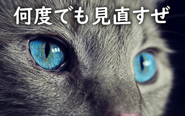 推敲する猫